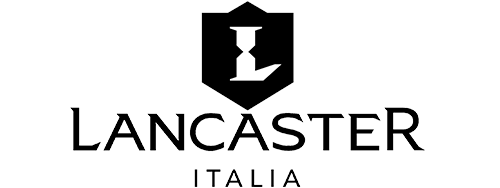 diseño paginas web en puebla - Lancaster