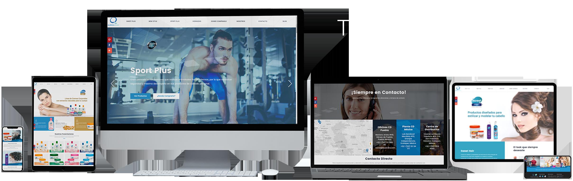 Desarrollo Paginas Web Puebla